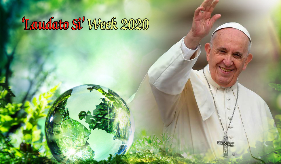Laudato Si Week – 2020 : In Solidarity with the Wounded World ...